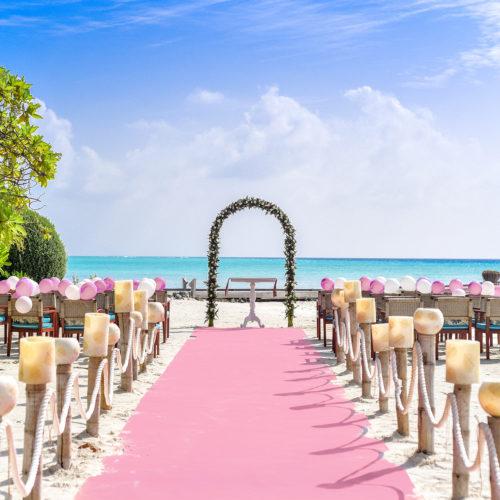 corsia rosa per eventi